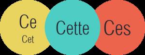 صفات اشاره در زبان فرانسه